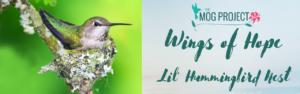 TMP Little Hummingbird Nest Logo